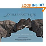 Elephant's Life: An Intimate Portrait From Africa