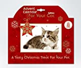 Advent for your Cat