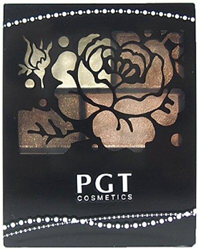 PGTフォーカラーニュアンスアイズ NE10 4g