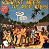 Meet the Roots Radics