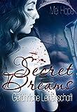 Image de Secret Dreams: Gefährliche Leidenschaft