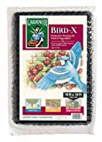 Dalen BN2 14-Foot by 14-Foot Bird-X Net 3/4-Inch Mesh