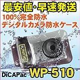 DicAPac WP510