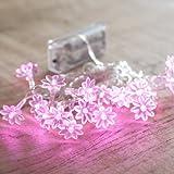 Guirlande Lumineuse à Piles avec 20 Fleurs LED Roses de Lights4fun