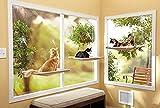 Brown Pets Cat Hammock Window Sucker Bed Cat Hanging Bed