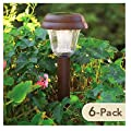 JIAWEI TECHNOLOGY L4C-N1-DB-6 Four Seasons Courtyard Solar Path Light, 6-Pack