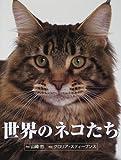 世界のネコたち