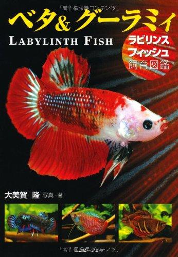 ベタ&グーラミィ―ラビリンスフィッシュ飼育図鑑 (アクアライフの本)