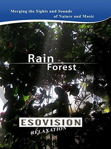 ESOVISION Relaxation RAIN FOREST