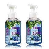 Bath & Body Works Blue Skies & Blooms Foaming Hand Soap 8.75 Oz, 259 Ml (Set Of 2)