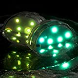 2 LED Lectro Color Changing Submersible Lights Set Waterproof Decor With Remote Controls