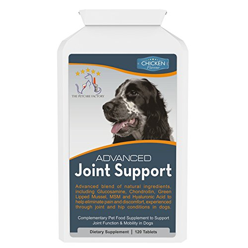 advanced-joint-support-supplement-for-dogs-with-powerful-glucosamine-chondroitin-green-lipped-mussel
