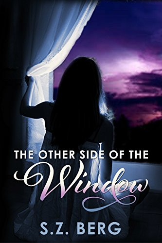Book: The Other Side of the Window by S.Z. Berg