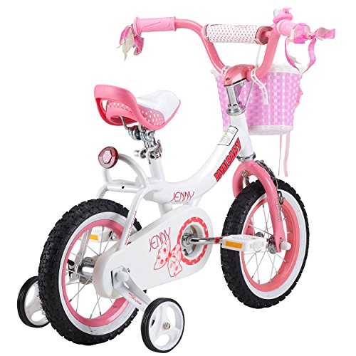 Royalbaby Jenny Princess Pink Girl's Bike with Training Wheels and Basket, Perfect Gift for Kids, 12-14-16 inch wheels 1
