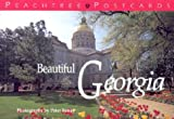 img - for Beautiful Georgia book / textbook / text book