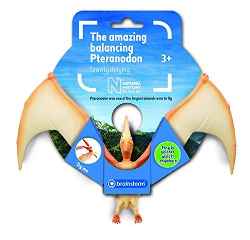 the-natural-history-museum-amazing-balancing-pteranodon