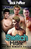 img - for Switch Hitter: Hot Gay Romance Erotica book / textbook / text book