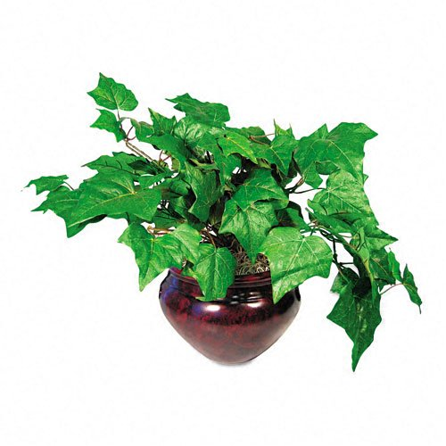 "Nu-Dell Products - Nu-Dell - Artificial Ivy Plant in a Mahogany Fiberglass Pot, 8"" Overall Height - Sold As 1 Each - Handcrafted silk design brings natural beauty to your home or office without the on-going expense of live plants or fresh flowers. - Low maintenance. - Complements any décor."