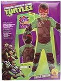 Teenage Mutant Ninja Turtles Classic Child Kids Costume Large