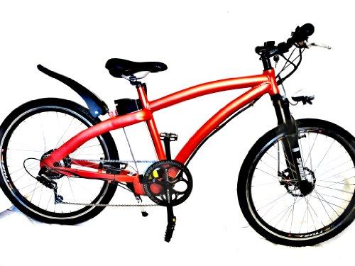FALCON Electric Mountain Bike (36V10Ah LiFe)