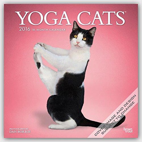 Yoga Cats 2016 Calendar