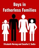 Boys in Fatherless Families (1410216950) by Herzog, Elizabeth
