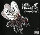 MORAL POLLUTION