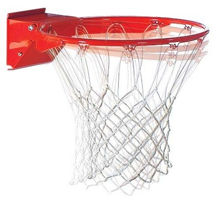 Pro Image Basketball Goal from Spalding