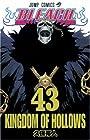 BLEACH -ブリーチ- 第43巻