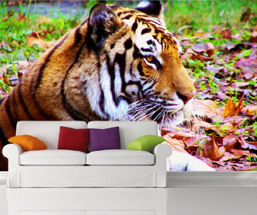 Wall Mural Decal Sticker Tiger MMartin127