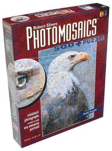 photomosaics robert silvers essay