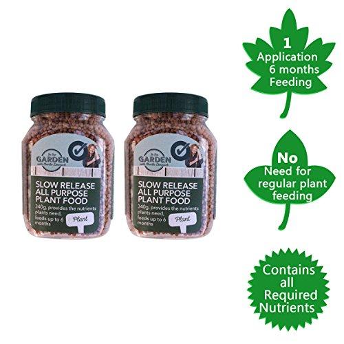 piante-a-rilascio-lento-feed-alimentare-per-plants-granules-rilasciando-nutrienti-e-potassio-cura-al