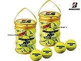 BRIDGESTONE(ブリヂストン) NP(ノンプレッシャー) テニスボール 30個入り×2袋 BBA460T-2SET