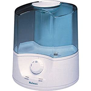 Amazon Com Holmes Hm 5125 Warm Mist Humidifier Single