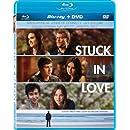 Stuck in Love (Blu-ray + DVD)