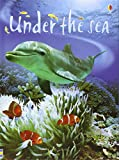 Fiona Patchett Under the Sea (Usborne Beginners)