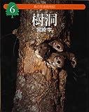 森の写真動物記〈6〉樹洞 (森の写真動物記 6)