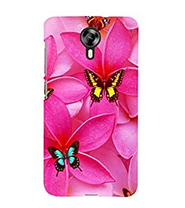 printtech Butterfly Flowers Back Case Cover for Micromax Canvas Xpress 2 E313