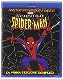 spectacular spider-man - season 01 (ce) (2 blu-ray) blu_ray Italian Import
