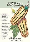 Squash Winter Delicata Honeyboat Organic Seed