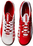 PUMA Men's Evospeed 4.3 Indoor Soccer Shoe