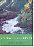 img - for A View of the River book / textbook / text book