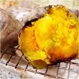 種子島産さつまいも「安納芋」2.5kg