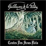 Contes Des Sous by Guillaume De La Piliere
