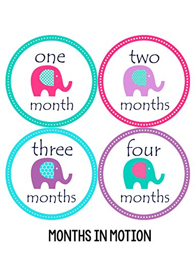 Months in Motion 098 Monthly Baby Stickers Baby Girl Month 1-12 Milestone Age