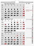 3-Monatskalender Kombi - Planer 2015