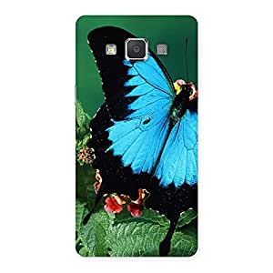 Butterfly on Plant Back Case Cover for Galaxy Grand Max
