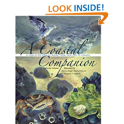 A Coastal Companion: A Year in the Gulf of Maine, from Cape Cod to Canada
