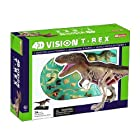 3D T-Rex Dinosaur Anatomy Model - Organs and Body Parts Puzzle