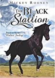 Cover art for  The Black Stallion
